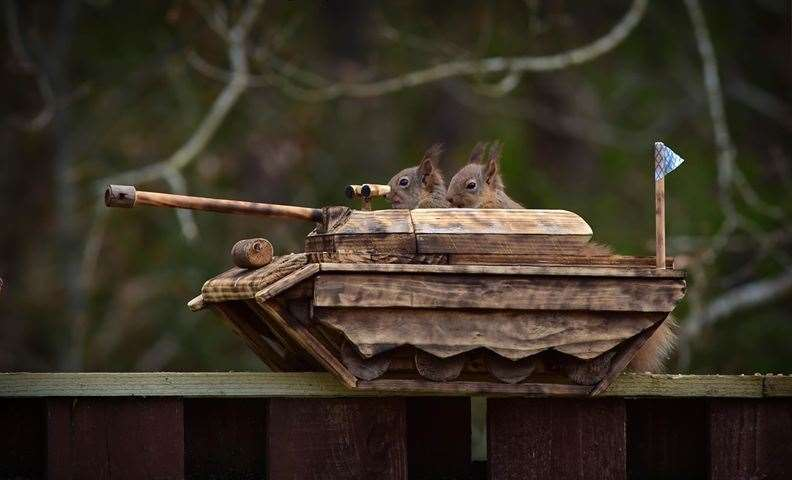 John then made this tank - which the squirrels enjoyed two at a time. Picture: John Beats